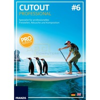 Cutout #6 professional